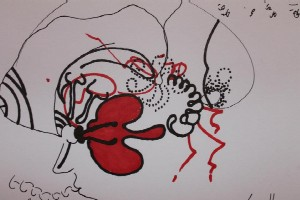 fg-clive-hambidge-new-brain-2-381757 10150589244972069 704277068 11378546 1060139679 n