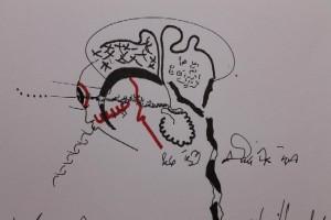 fg-clive-hambidge-new-brain-7-407409 10150589529022069 704277068 11379495 656537866 n